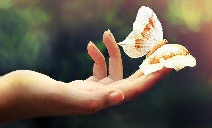 ладонь с бабочкой, массаж рук