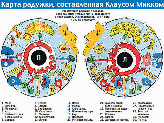 карта радужки