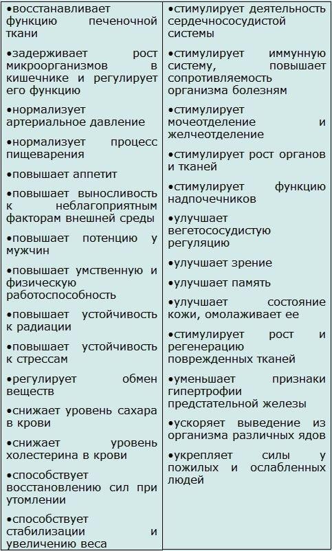 таблица лечебных свойств перги