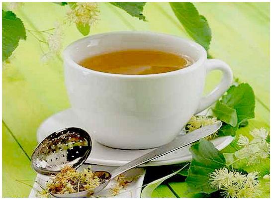 липовый чай - польза