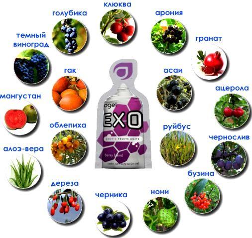 антиоксиданты где находятся (продукты)