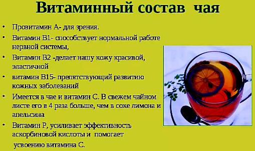 витаминный состав чая