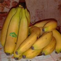 Бананы — польза и вред для организма от плодов до кожуры