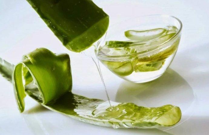 сок алоэ - польза для организма
