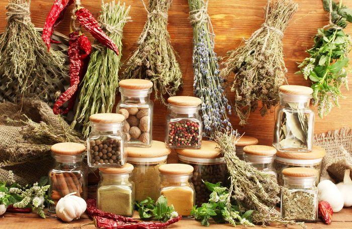 очищающие травы для организма
