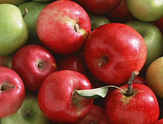 Чем полезны яблоки применение и противопоказания