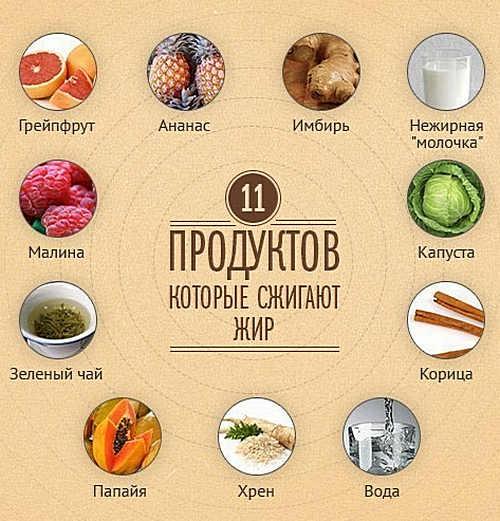 11 продуктов-жиросжигателей