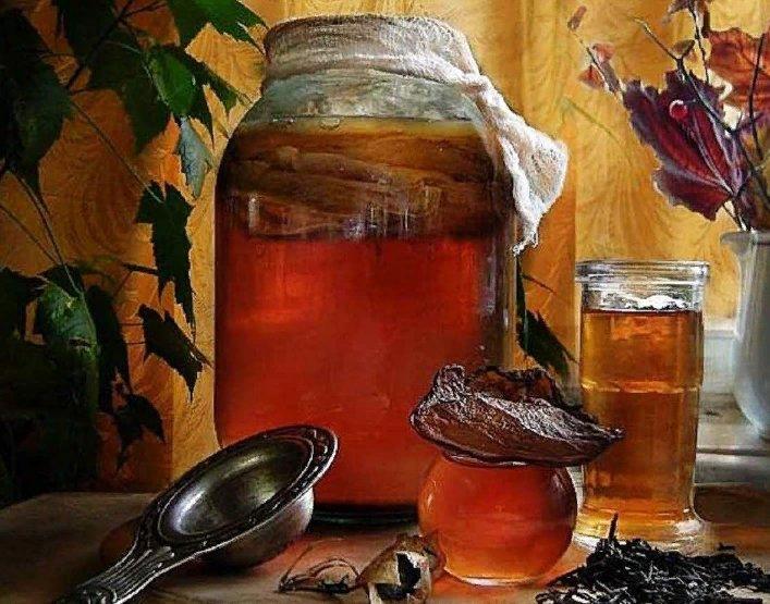 польза гриба чайного