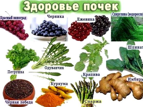 продукты для здоровья почек