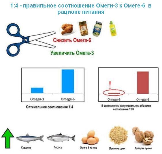 Омега 6 и Омега 3 правильное соотношение в питании