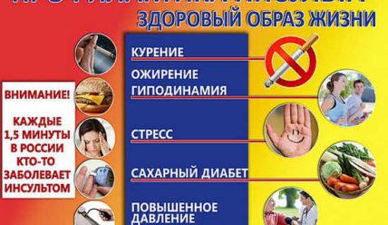 Профилактика инсульта головного мозга, как избежать инсульта