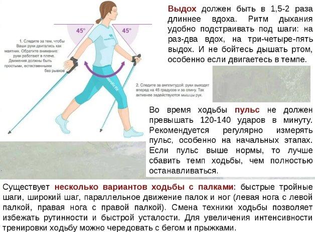правила и техника скандинавской ходьбы