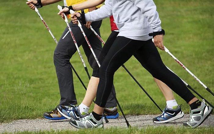 скандинавская ходьба с палками - польза и вред