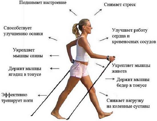 эффективное очищение организма для похудения