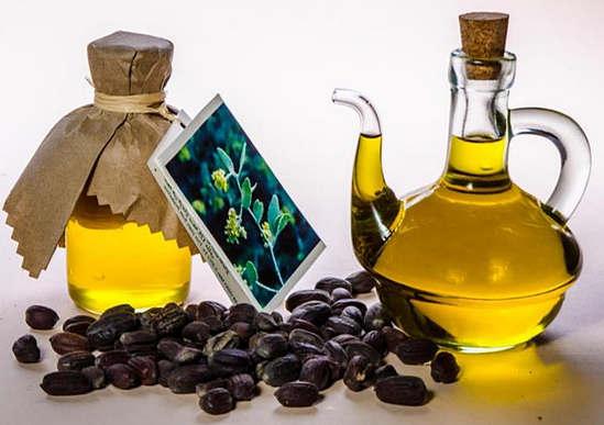 применение масла жожоба и его свойства