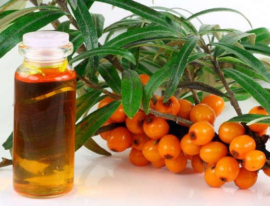 масло облепихи - свойства и применение