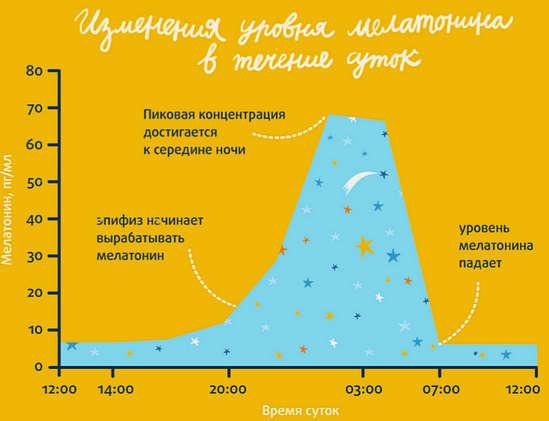 изменение уровня мелатонина в течение суток