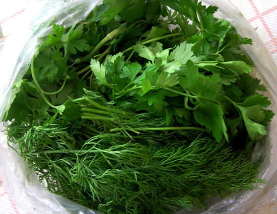 польза и вред свежей зелени