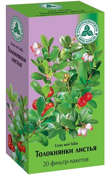листья толокнянки полезные свойства и противопоказания