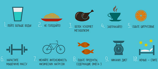 правила хорошего метаболизма