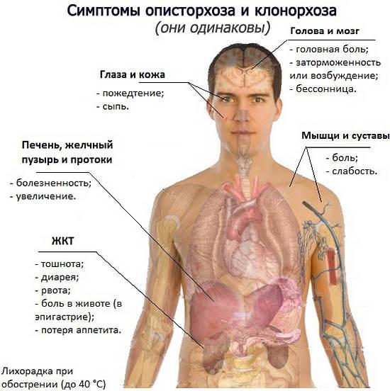 аллергия на мангустин