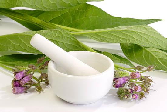 Окопник лекарственный (живокост) - применение для суставов