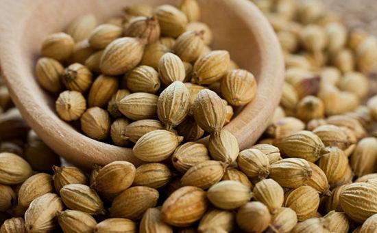 семена кориандра польза