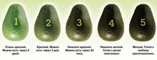 как выбрать правильно и есть авокадо