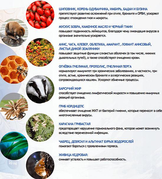 народные средства для повышения потенции Далматово