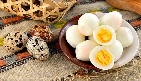 применение яиц перепелок