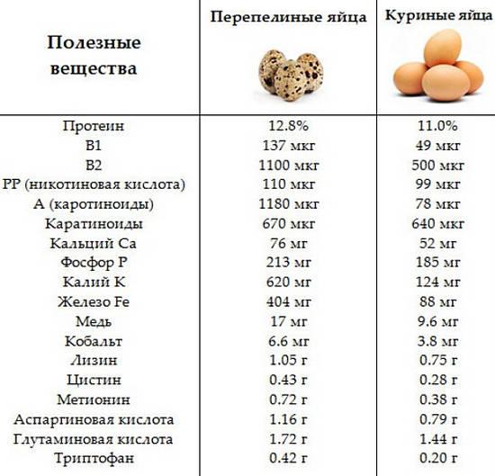 сравнение полезных свойств яиц перепелиных и куриных