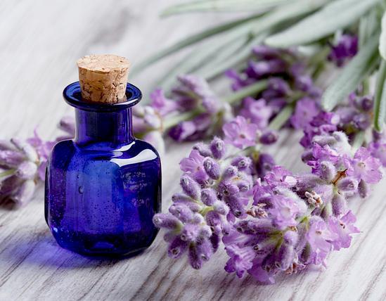 лавандовое масло его полезные свойства и применение