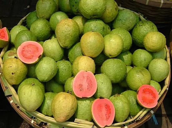 фрукт гуава польза и вред