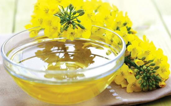 полезные лечебные свойства масла рыжика