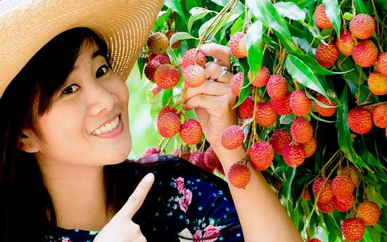 Фрукт личи - полезные свойства и вред, как едят плоды