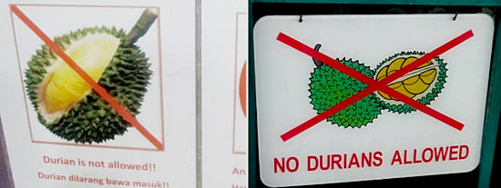 запрет дурианов в общественных местах