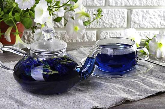 синий чай из Тайланда полезные свойства