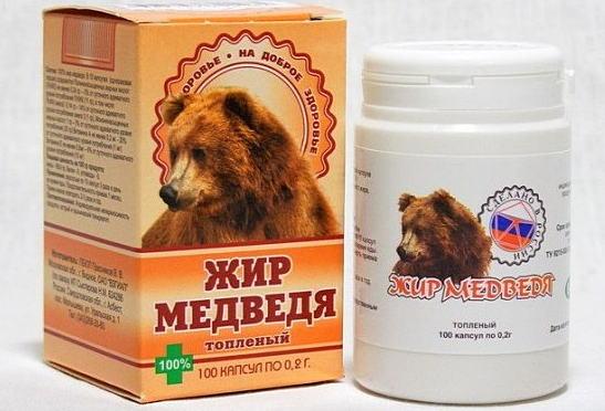 жир медведя - польза