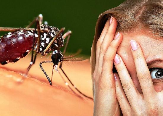аллергия на укусы насекомых - причины и симптомы