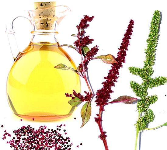 применение масла амаранта