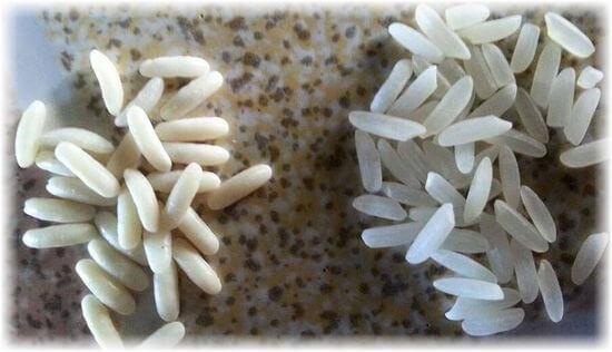 отличие настоящего риса от искусственного