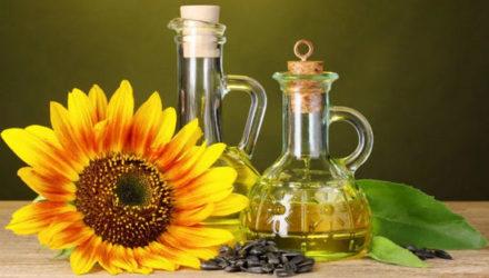 Масло подсолнечное — полезные свойства и противопоказания, как принимать