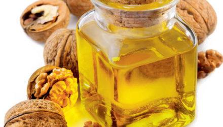 Масло грецкого ореха — полезные свойства и противопоказания, применение