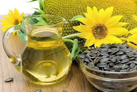 полезные свойства масла подсолнечника