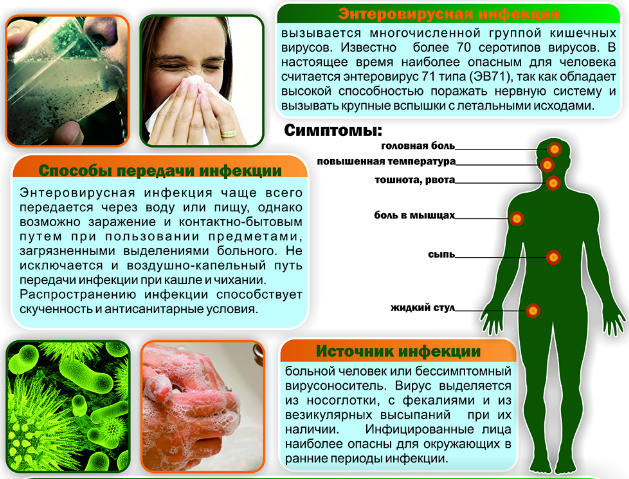 причины энтеровируса и признаки