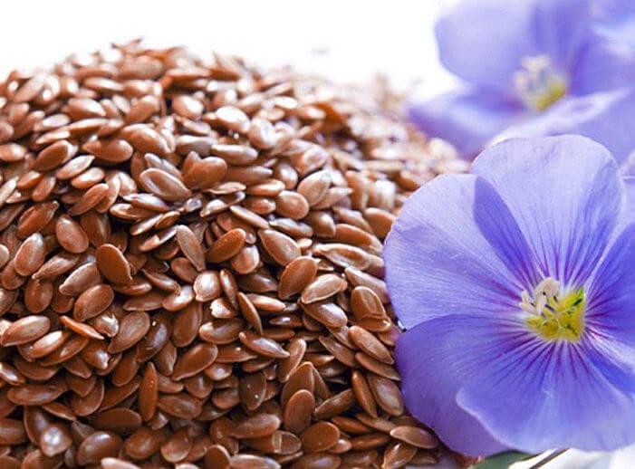 семена льна - польза и вред