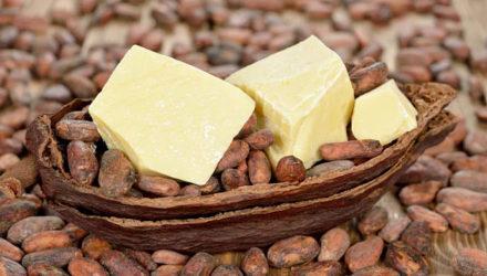 Масло какао — свойства и применение, польза и вред для организма