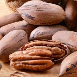 Орех пекан – польза и вред для организма, полезные свойства орехов, масла, фото