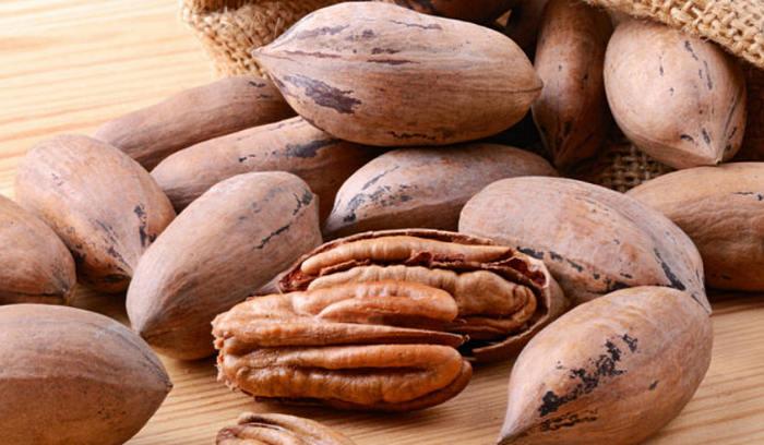 орех пекан - польза и вред для здоровья
