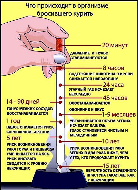 при бросании табакокурения что происходит с организм